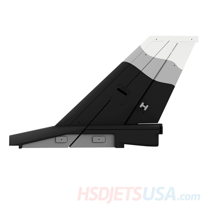 Picture of HSDJETS S-EDF 105mm HF-16 Black and white Snow Camo color Vertical tail